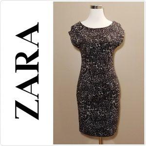 NWT Zara Leopard Print Fitted Dress